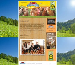 Screenshot der alten Homepage des Steinefurthofs